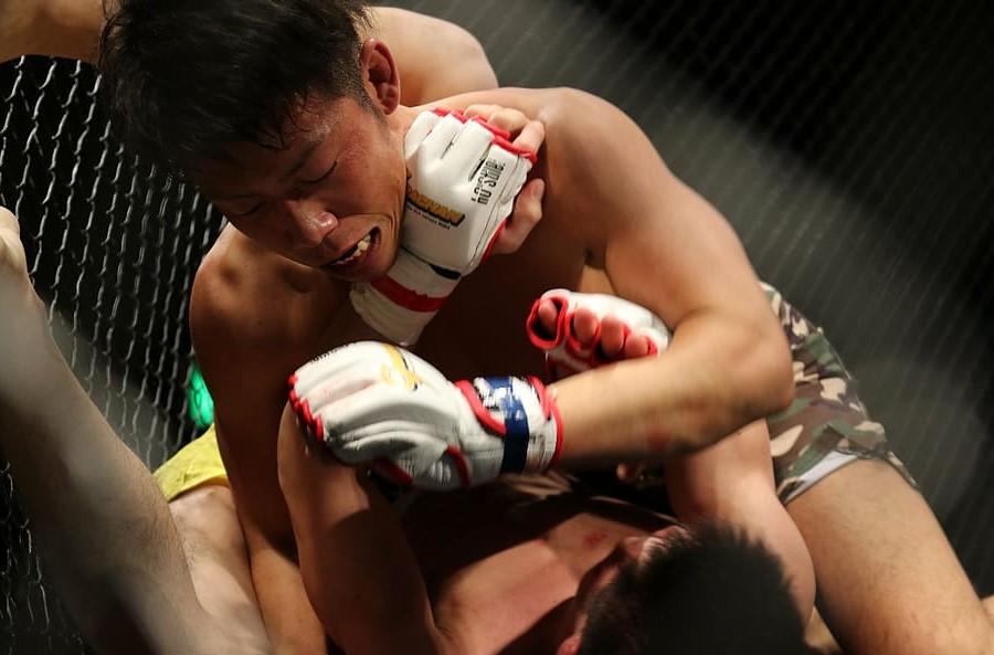 Catégories poids MMA